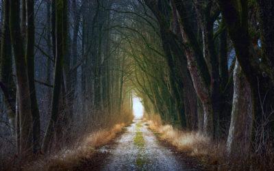 Soziale Isolation bei Angststörung